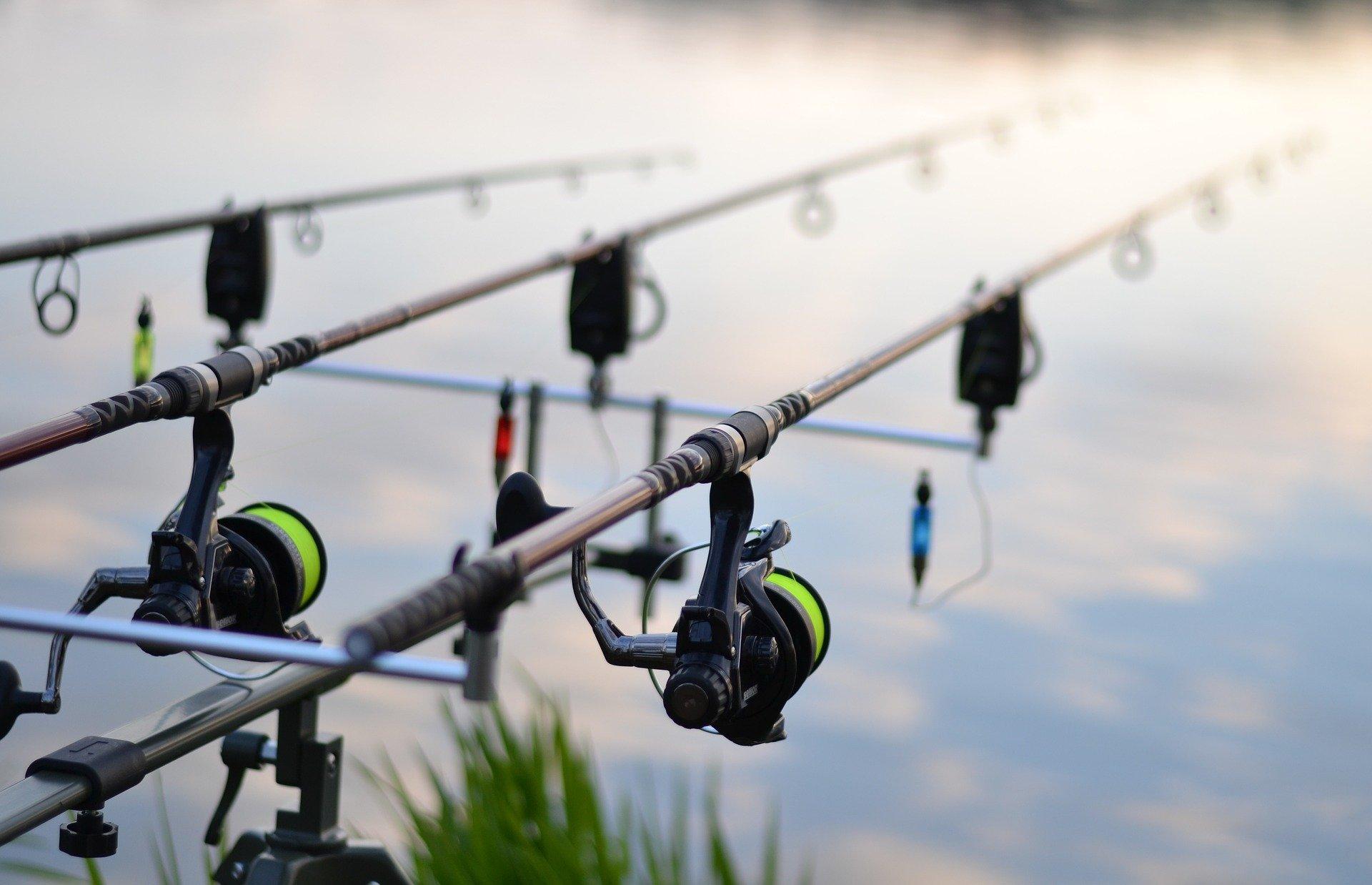 fishing-3302535_1920